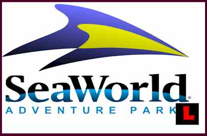 Sea World Trainer Killed Home VIDEO Killer Whale Attack Video 2010
