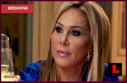 Adrienne Maloof and Paul Suing Brandy on RHOBH