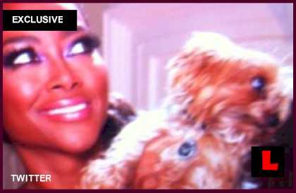 Kenya Moore Dog Velvet Dead: Terrier Left Near Death, Dies at Hospital what happened how did she